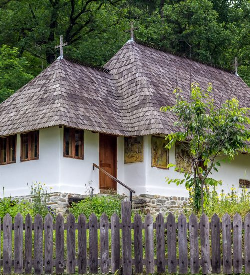 casa traditionala din zona Costesti